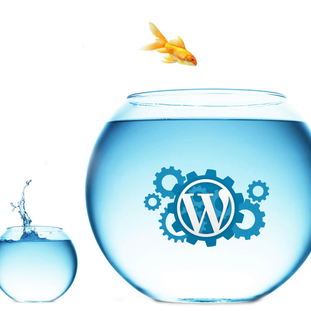 Other WordPress Services by London Creative Designs - WordPress Agency in London. WordPress Website Migration