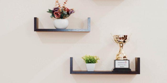 plant-prize-shelves-74942-2